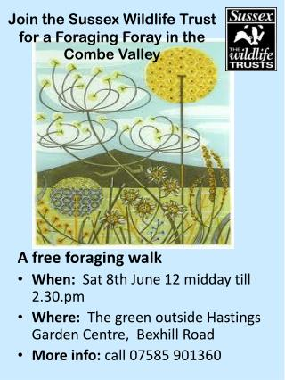 Join the Sussex Wildlife Trust for a Foraging  Foray in the Combe Valley