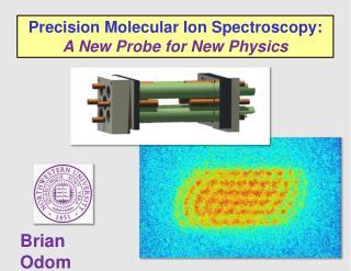 Precision Molecular Ion Spectroscopy: A New Probe for New Physics