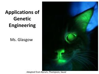 Applications of Genetic Engineering