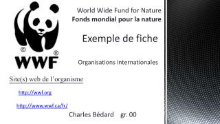 Exemple de fiche  Organisations internationales