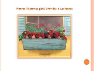 Plantas Restritas para Gr�vidas e Lactantes