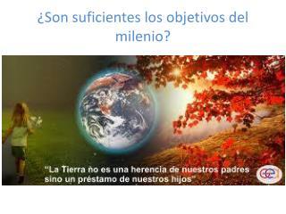 ¿Son suficientes los objetivos del milenio?