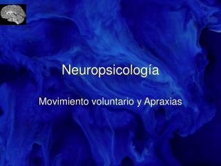 Neuropsicolog a