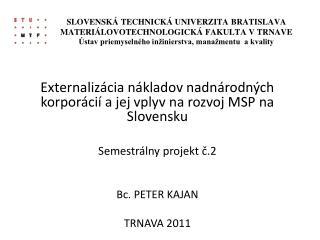 Externalizácia nákladov nadnárodných korporácií a jej vplyv na rozvoj MSP na Slovensku
