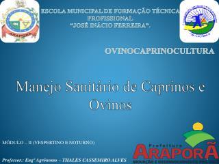 Manejo Sanitário de Caprinos e Ovinos