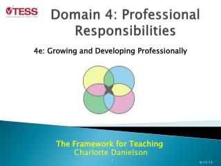 Domain 4: Professional Responsibilities