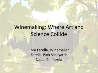 Winemaking: Where Art and Science Collide