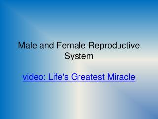 Male and Female Reproductive System video: Life's Greatest Miracle