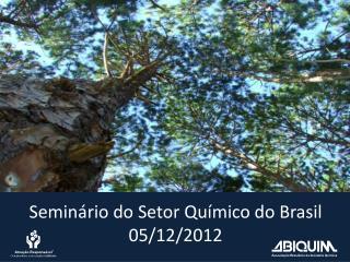 Semin�rio do Setor Qu�mico do Brasil 05/12/2012