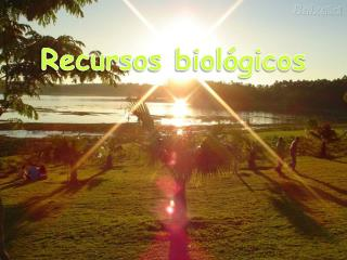 Recursos biológicos