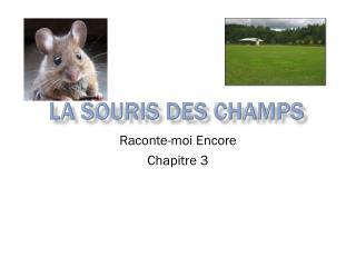 La  souris  des champs