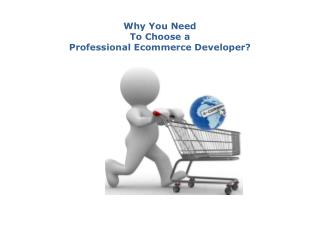 Professional Ecommerce Development