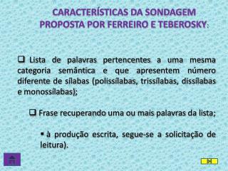 CARACTERÍSTICAS DA SONDAGEM PROPOSTA POR FERREIRO E TEBEROSKY :