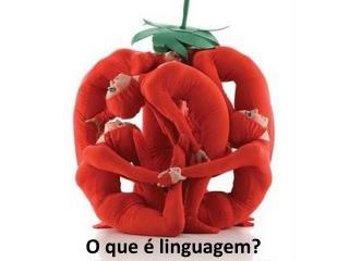 O que é linguagem?