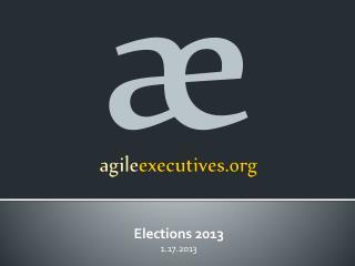 agile executives.org