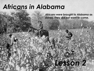 Africans in Alabama