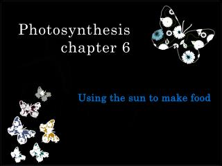 Photosynthesis  chapter 6