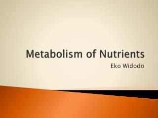 Metabolism of Nutrients