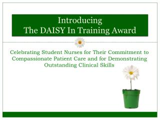 Introducing  The DAISY In Training Award