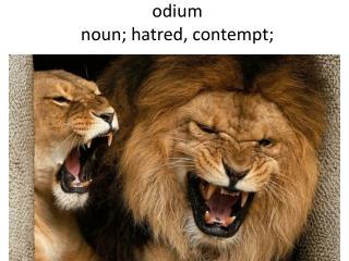 odium noun; hatred, contempt;