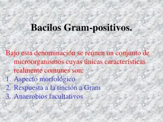 Bacilos Gram-positivos.
