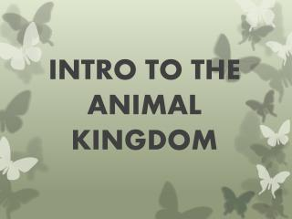 INTRO TO THE ANIMAL KINGDOM