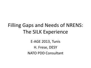 Filling Gaps and Needs of NRENS: The SILK Experience