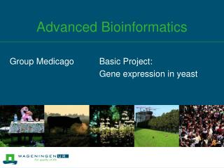 Advanced Bioinformatics