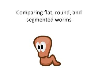 Comparing flat, round, and segmented worms