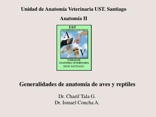 Unidad de Anatomía Veterinaria UST. Santiago Anatomía II
