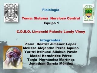 Fisiología  Tema: Sistema  Nervioso Central   Equipo 1  C.D.E.O.  Limonchi  Palacio  Landy Viney