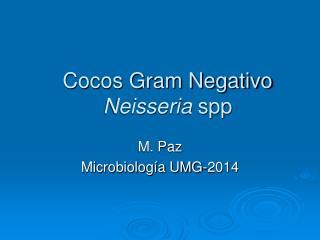 Cocos Gram Negativo Neisseria spp