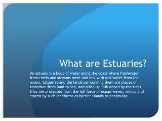 What are Estuaries?
