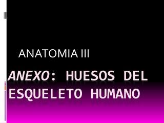 Anexo : Huesos del esqueleto humano