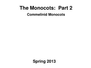 The Monocots:  Part 2 Commelinid Monocots