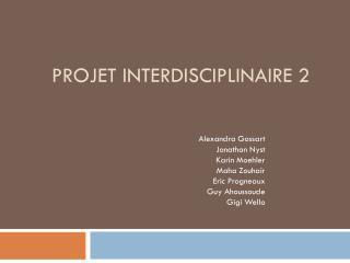 Projet interdisciplinaire 2