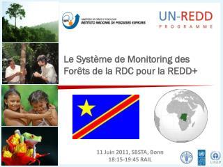 Le  Système  de Monitoring des  Forêts  de la RDC pour la REDD+