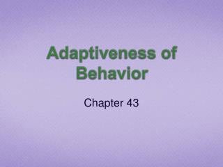 Adaptiveness  of Behavior