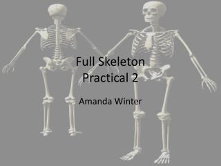 Full Skeleton Practical 2