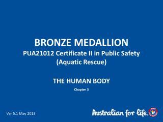 BRONZE MEDALLION PUA21012  Certificate II in Public Safety  (Aquatic Rescue)