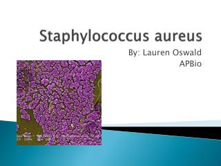 Staphylococcus a ureus