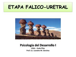 ETAPA FALICO-URETRAL