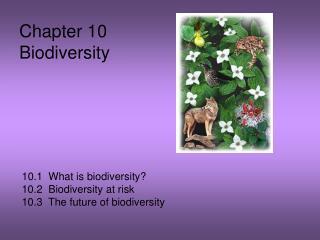 Chapter 10 Biodiversity