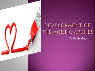 Development of the AORTIC ARCHES