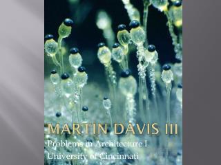 Martin Davis III