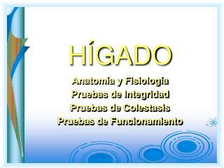 H�GADO