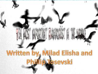 Written by, Milad Elisha and  Phillip Tosevski