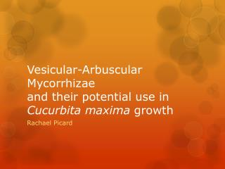 Vesicular-Arbuscular Mycorrhizae  and their potential use in  Cucurbita maxima  growth