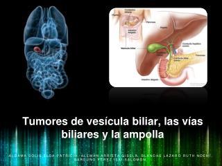 Tumores de vesícula biliar, las vías biliares y la ampolla