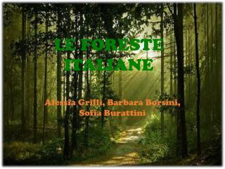 LE FORESTE ITALIANE